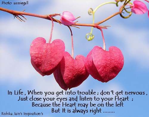 heart-is-always-right