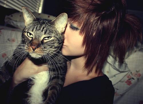 becca-cat-cute-girl-scene-Favim.com-202038
