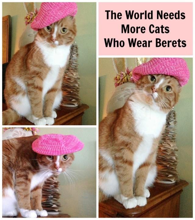 cat-wearing-beret-907x1024