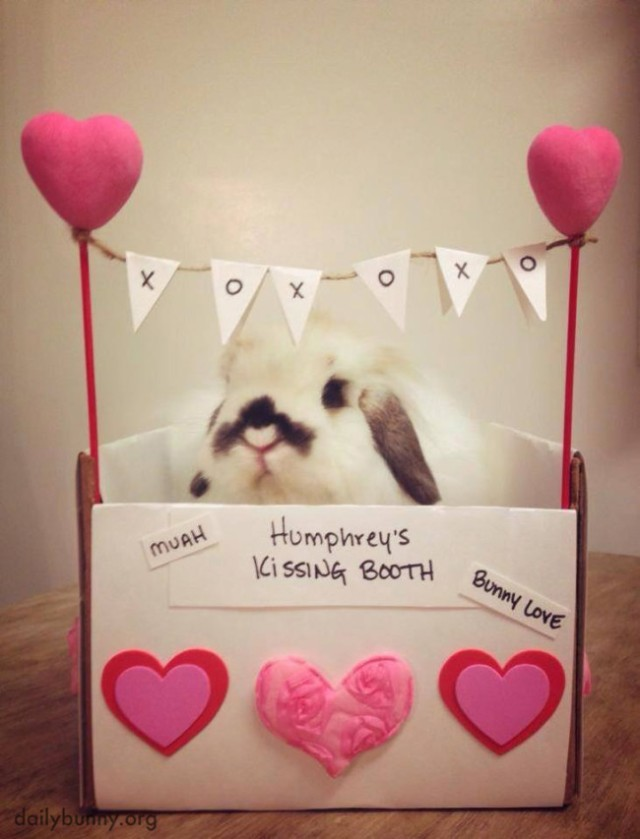 Make-Sure-You-Bring-a-Treat-for-Bunny-at-His-Kissing-Booth-650x853